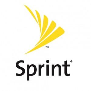 The Intrinsic Value of Sprint